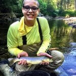 brown trout fly fishing nc
