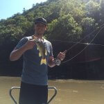 fly fishing guided tour asheville