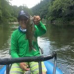 smallmouth fly fishing guide asheville
