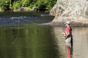 asheville fly fishing