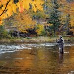 asheville fly fishing guide lessons