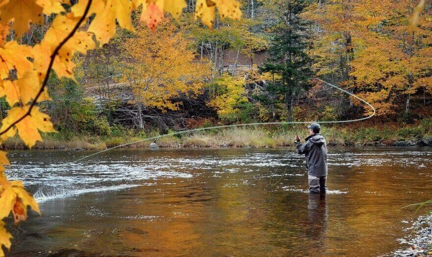 Saa fly fishing guide asheville nc trophy guided for Nc wildlife fishing license