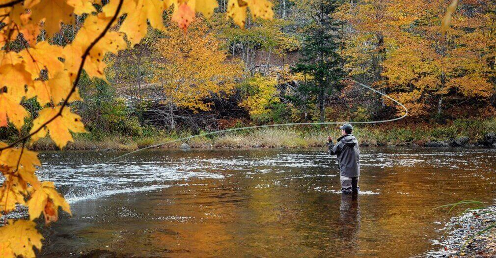 saa fly fishing guide asheville nc trophy guided