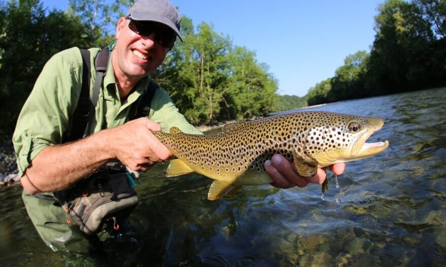 brown trout fly fishing asheville