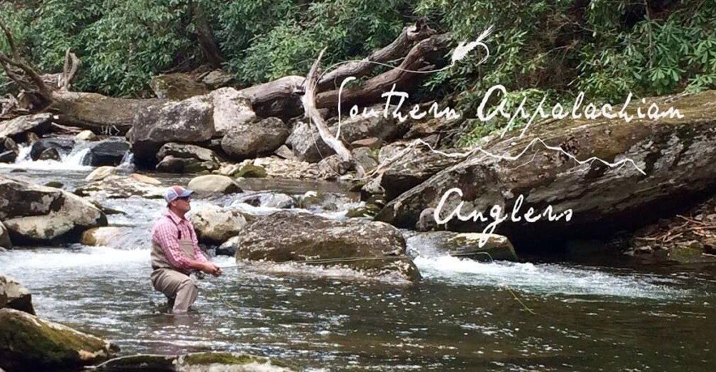asheville guide service