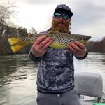 asheville brown trout fly fishing