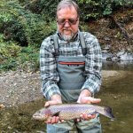 rainbow trout fishing hendersonville nc