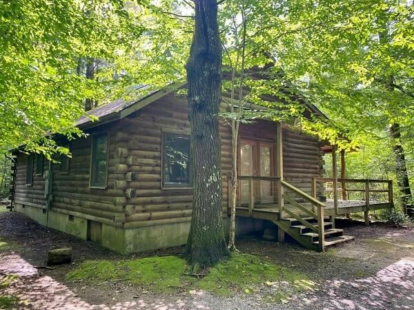 cabin on neils creek
